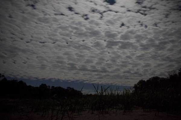 Moon behind Cirrocumulus -